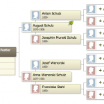 Screen shot from ancestry.com - the little leaf by August Schulz indicates a hint, but I think the hints belong to different people with the same name.