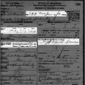 1906-10 death certificate August Schulz with sections highlighted