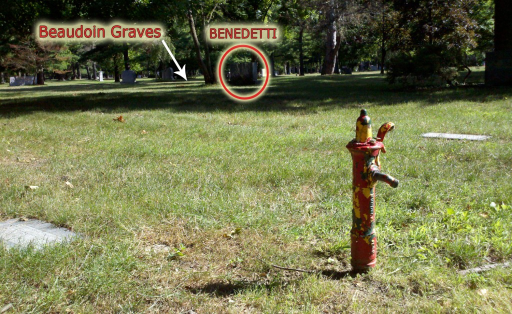 annotated photographs of the grave site from multiple angles will make it easier to find next time